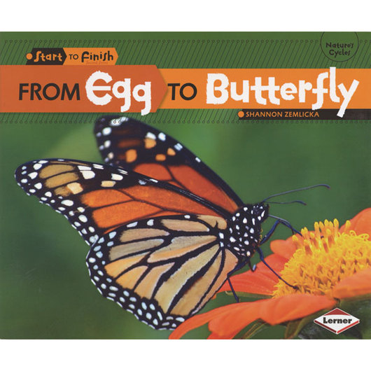 From Start to Finish Life Cycles Book - From Egg to Butterfly