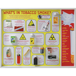 Whats in Tobacco Smoke? Display