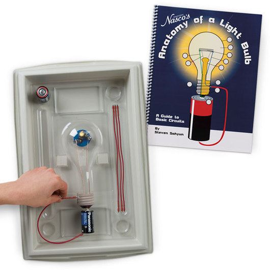Nasco Anatomy Of A Light Bulb Electricity Physical Science