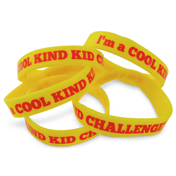 Cool Kind Kid Bullying Prevention Social Skills Program