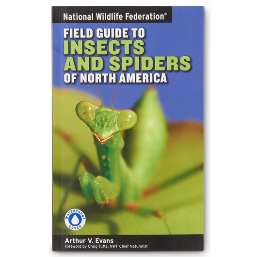 National Wildlife Federation® Field Guide to Insects and Spiders of North America