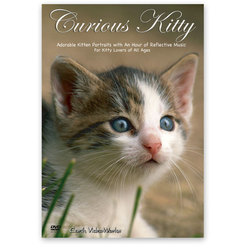 Earth VideoWorks - Curious Kitty DVD