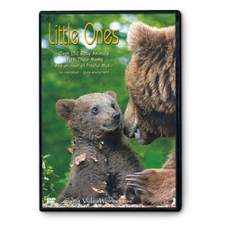 Earth VideoWorks - Little Ones DVD