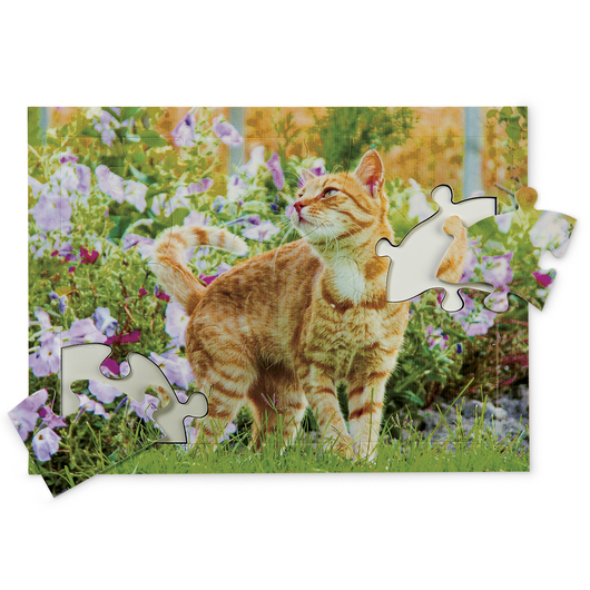 Pets Tray Puzzles - 13 Pieces - Curious Cat