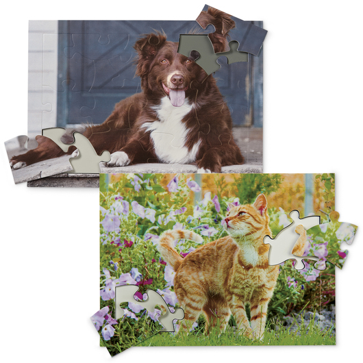 Pets Tray Puzzles - 13 Pieces - Set of 2