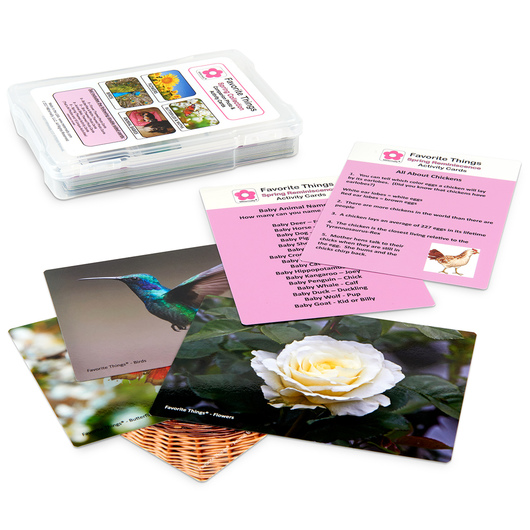 Favorite Things Seasons Reminiscence Photo and Activity Cards - Spring