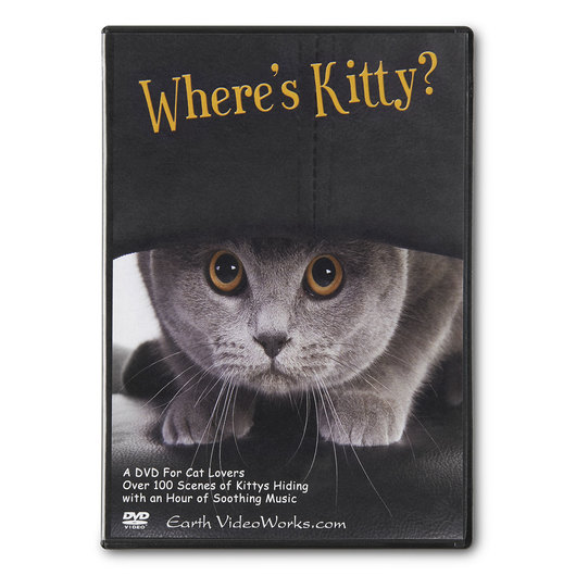 Earth VideoWorks - Where's Kitty? DVD