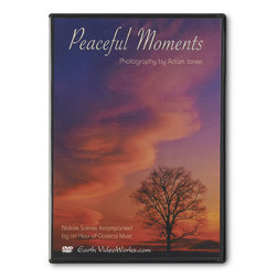 Continuous Play DVD - Peaceful Moments