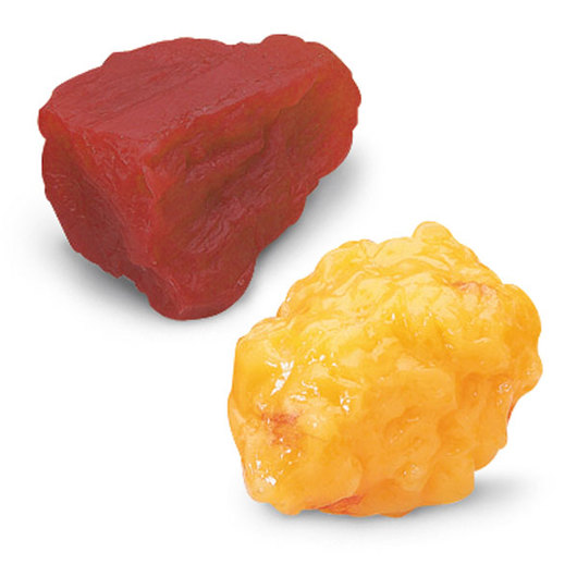 Nasco 1-lb. Fat and 1-lb. Muscle Replicas