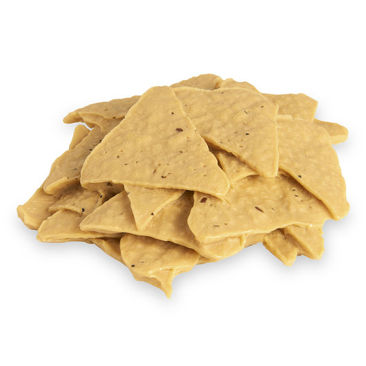 Nasco Chips Food Replica - Tortilla