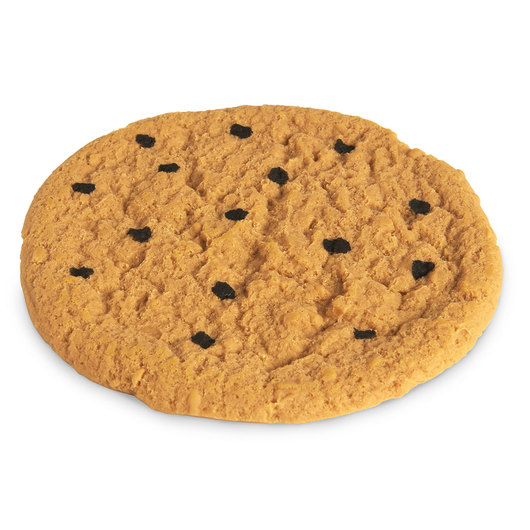 Nasco Cookie Food Replica - Chocolate Chip - 4 in. dia. (10 cm)