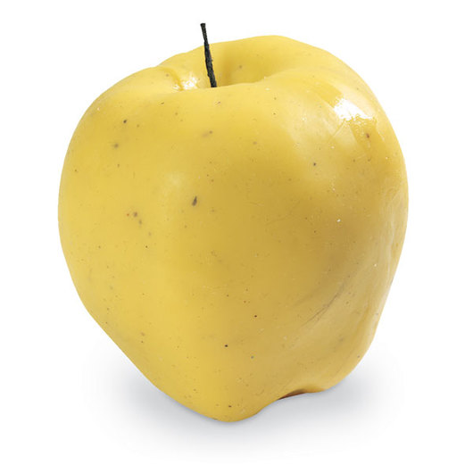 Nasco Apple Food Replica - Golden Delicious