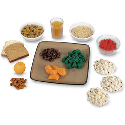 Nasco Fiber Food Replica Kit
