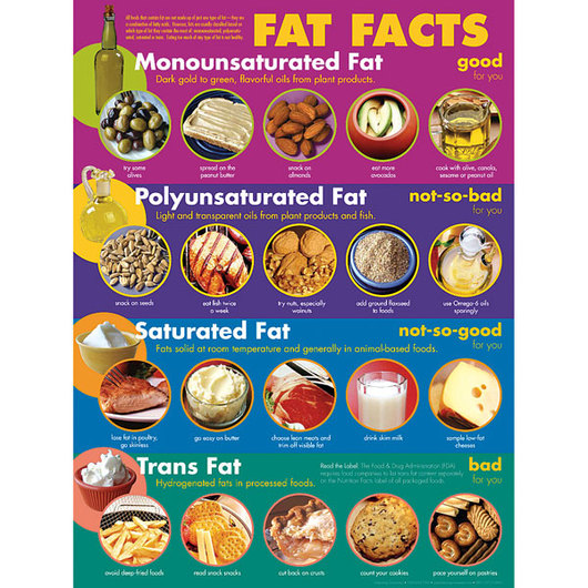 fat facts secondary poster charts posters general nutrition