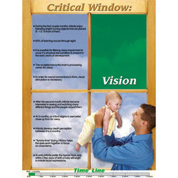 Brain Development of Young Children - Vision Poster