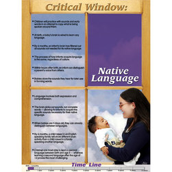Brain Development of Young Children - Native Language Poster