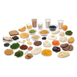 Nasco Carb Counting Food Replica Kit and TearPad™