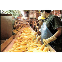 Food Processing: A Field Trip