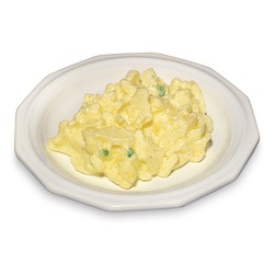 Nasco Potato Salad Food Replica