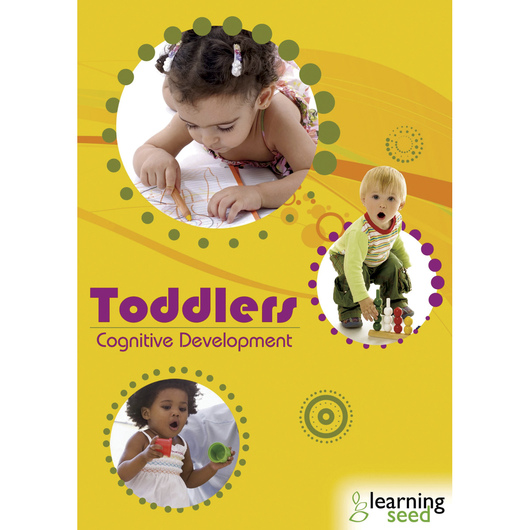 Toddler Cognitive Development DVD