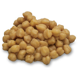 Nasco Chick Peas (Garbanzo Beans) Food Replica