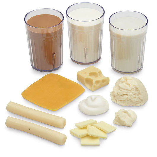 Nasco Big Milk Food Replica Kit