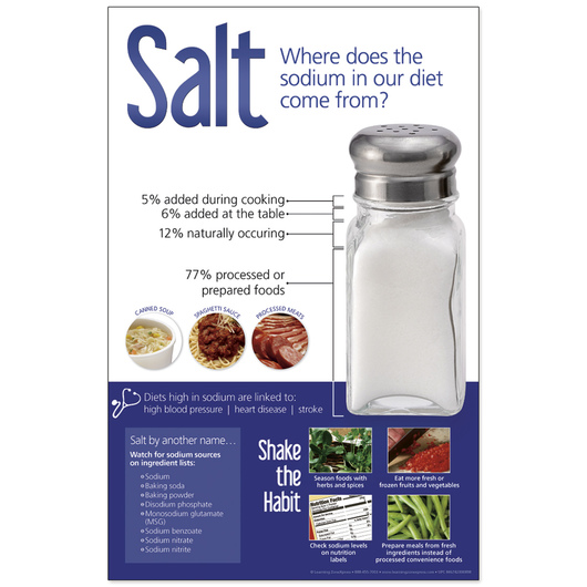 Salt Sources Poster - 11 in. x 17 in.
