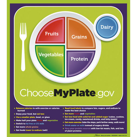 MyPlate Laminated Poster with Key Phrases - 20 x 18