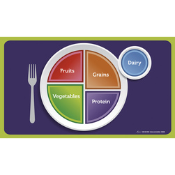 MyPlate Cling Place Mats. Set of 5