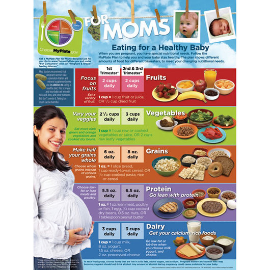 MyPlate for Expecting Moms Poster - 18 x 24