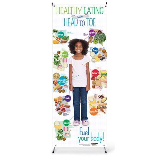Healthy Eating From Head To Toe Child Vinyl Banner With Stand Banners Posters Children S Nutrition Nutrition Teaching Aids Healthcare Nasco