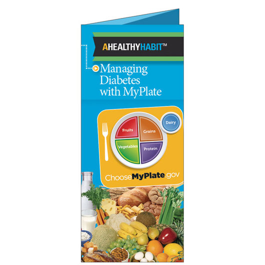 Diabetes MyPlate Guide &#45 English