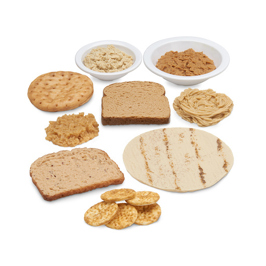Nasco Whole Grains Food Replica Kit