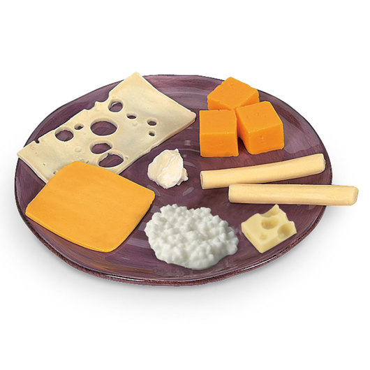 Nasco Cheese Food Replica Kit