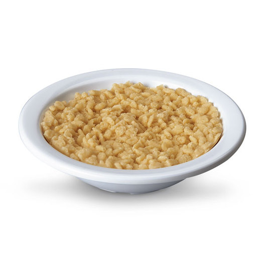 Nasco Crispy Rice Food Replica