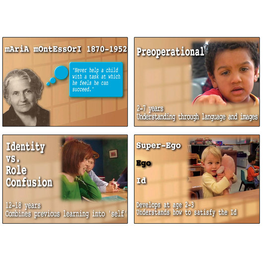 Child Development Theorists DVD