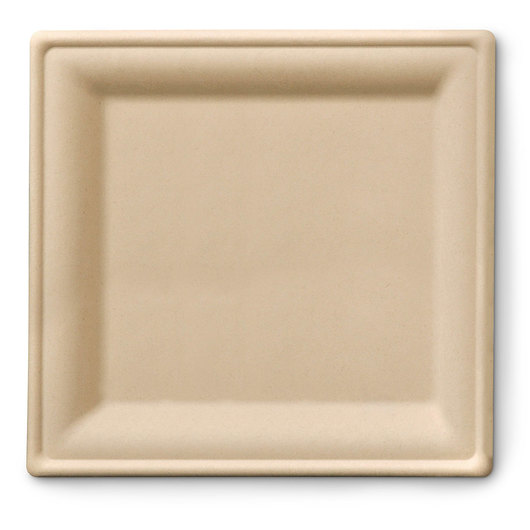 Eco-Friendly Containers - Square Plates - 10 in. - Case of 250