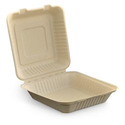 Eco-Friendly Clamshell Containers - 9 in. - Case of 200