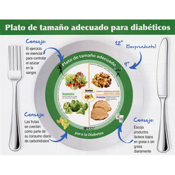 Diabetes Plate Tablet - Spanish