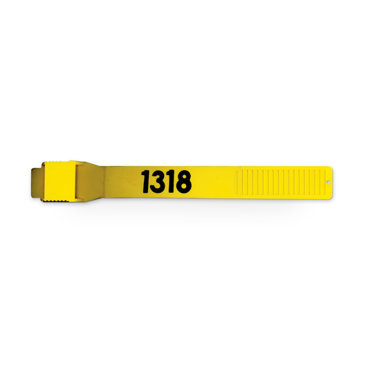 Leg Bands - Yellow