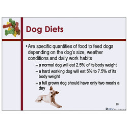 Basic Canine Nutrition PowerPoint Presentation