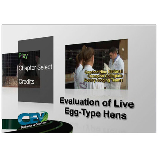 Evaluation of Live Egg-Type Hens