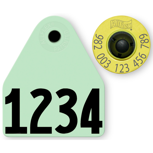 Allflex® HDX EID 982 Fair Sheep/Goat Panel and Button Tag with Custom Management Number - Green