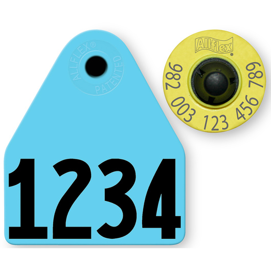 Allflex® HDX EID 982 Fair Sheep/Goat Panel and Button Tag with Custom Management Number - Blue