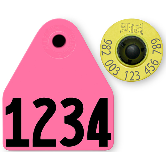 Allflex® HDX EID 982 Fair Sheep/Goat Panel and Button Tag with Custom Management Number - Magenta
