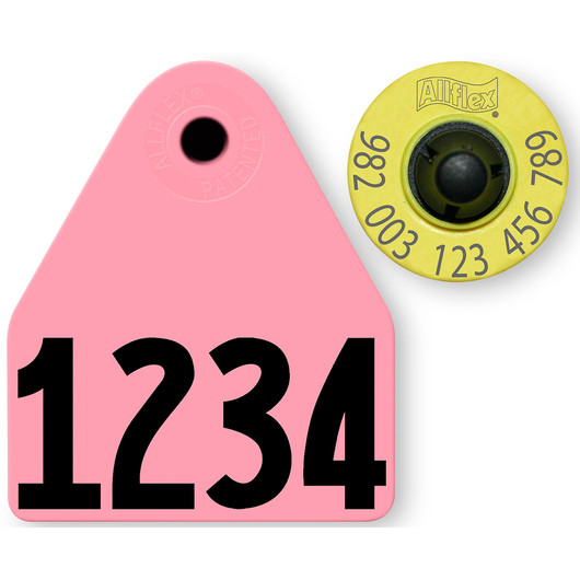 Allflex® HDX EID 982 Fair Sheep/Goat Panel and Button Tag with Custom Management Number - Pink