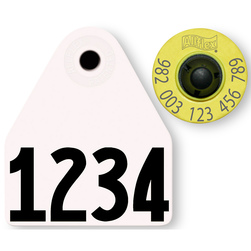 Allflex® HDX EID 982 Fair Sheep/Goat Panel and Button Tag with Custom Management Number - White