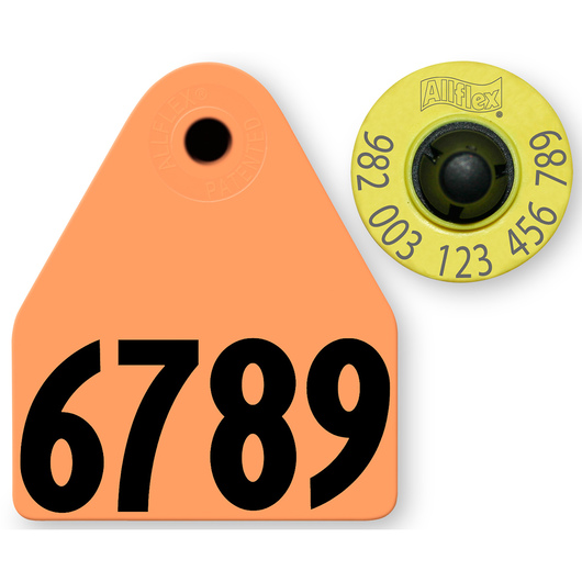 Allflex® HDX EID 982 Fair Sheep/Goat Panel and Button Tag with Last 4 Digits of EID Number - Orange
