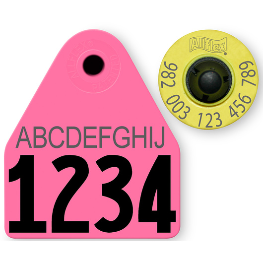 Allflex® HDX EID 982 Fair Sheep/Goat Panel and Button Tag with Custom Management Number and 10-Character Personalization - Magenta