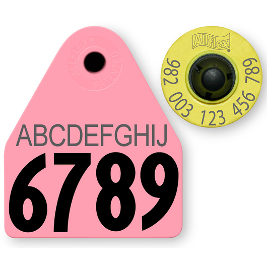 Allflex® HDX EID 982 Fair Sheep/Goat Panel and Button Tag with Last 4 Digits of EID Number and 10-Character Personalization - Pink